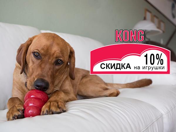 Скидка -10% на игрушки Kong!