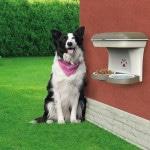 Купить BAMA PET миска для собак настенная двойная 1600 мл 48х27х42h см, бежевая BAMA PET в Калиниграде с доставкой (фото 3)