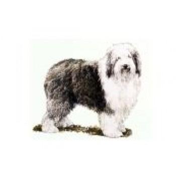 Сухие корма для собак Royal Canin Здоровое питание для собак крупных размеров, от 25 до 45 кг