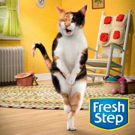 Наполнители для кошачьего туалета Fresh Step (Фреш Степ, США)