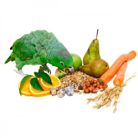 Витамины и добавки для птиц
