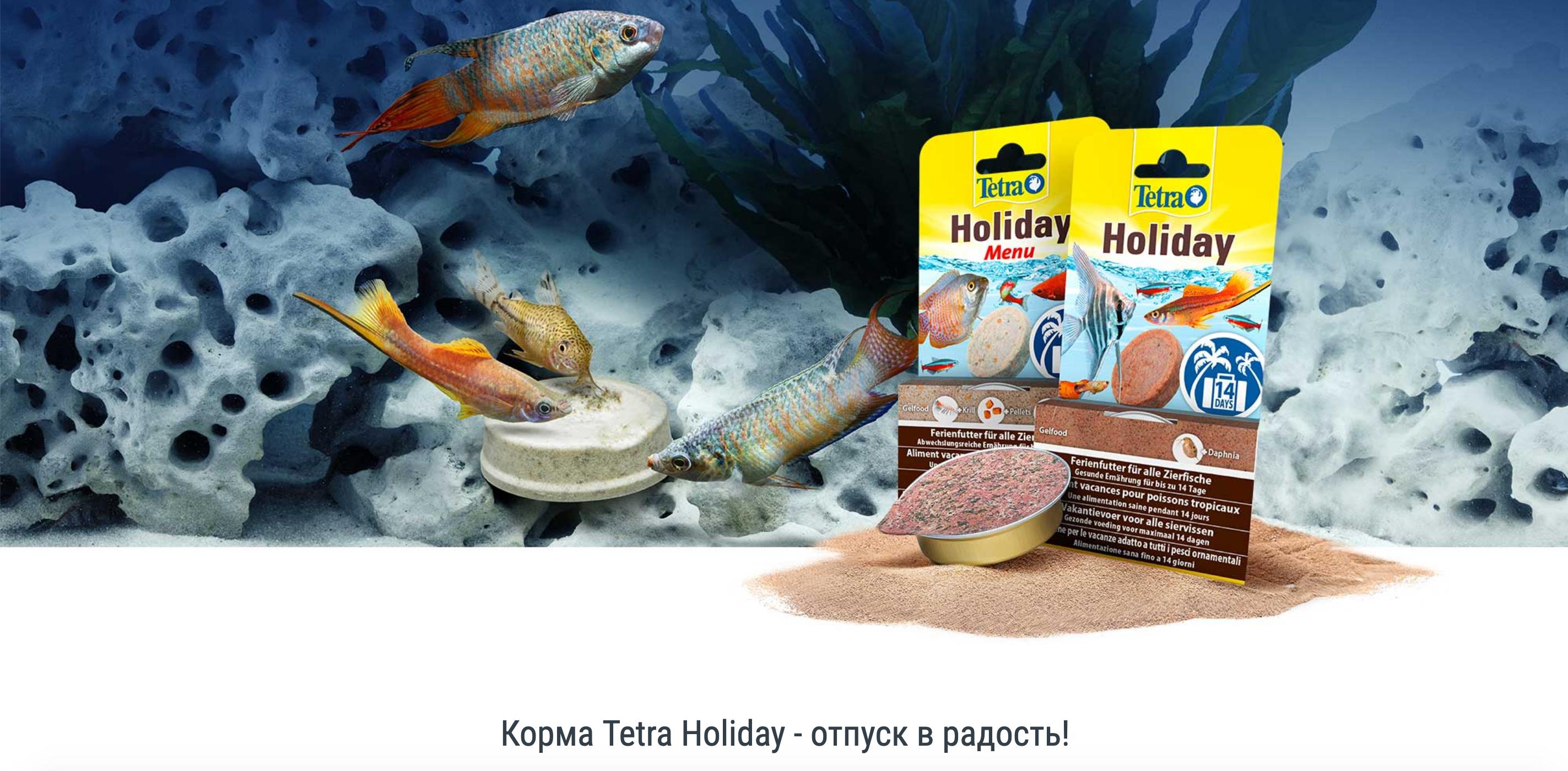 Купить корм для рыб Tetra в Калининграде